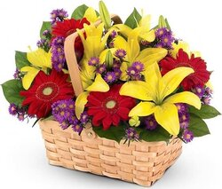 Basket of bright lilies, gerberas and mixed flowers