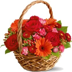 Basket of roses, gerberas and/or daisies and mixed flowers in warm colors