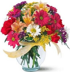 Bright gerberas or daisies, alstroemerias and mixed flowers
