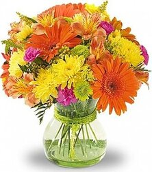 Gerberas, Alstroemerias and Mixed Flowers