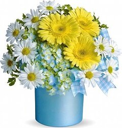 Delicate gerberas and/or daisies and mixed flowers