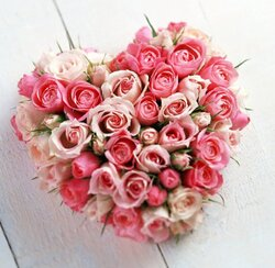 Heart arrangement of pink roses