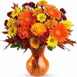Roses, gerberas and/or daisies and mixed flowers in warm colors
