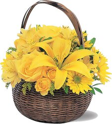 Sunny basket of roses, lilies, daisies or gerberas and mixed flowers